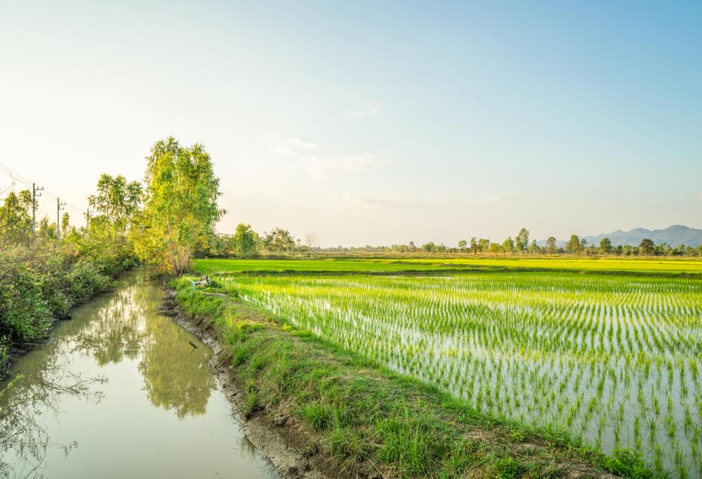 တောင်သူလယ်သမားများသို့ အသိပေးကြေညာခြင်း