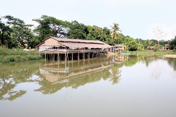 ကြက်နှင့် ငါးတွဲဖက်မွေးမြူခြင်းကြောင့် ငါးများတွင် ဆေးယဉ်ပါးရောဂါဖြစ်ပွားနိုင်၍ ယင်းမွေးမြူရေးစနစ်ကို ပြန်လည်သုံးသပ်ရန် အစိုးရထံတင်ပြမည်