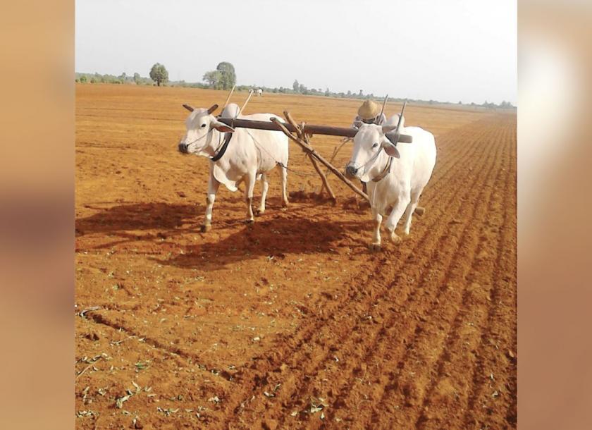 မကွေးတိုင်းဒေသကြီး၌လယ်ယာမြေ ရောင်းဝယ်၊ ပေါင်နှံ၊ ငှားရမ်းမှုများ တရားဝင်စာချုပ်ဖြင့် ဆောင်ရွက်ပေးနေသော်လည်း ယနေ့အထိဆောင်ရွက်မှုမရှိသေး