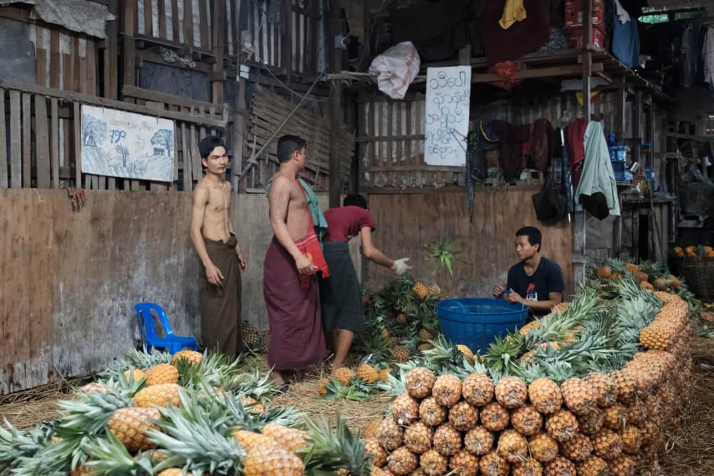 မြန်မာ့နာနတ်သီးကို ပြည်ပတင်ပို့နိုင်ရန် စီစဉ်ဆောင်ရွက်နေ