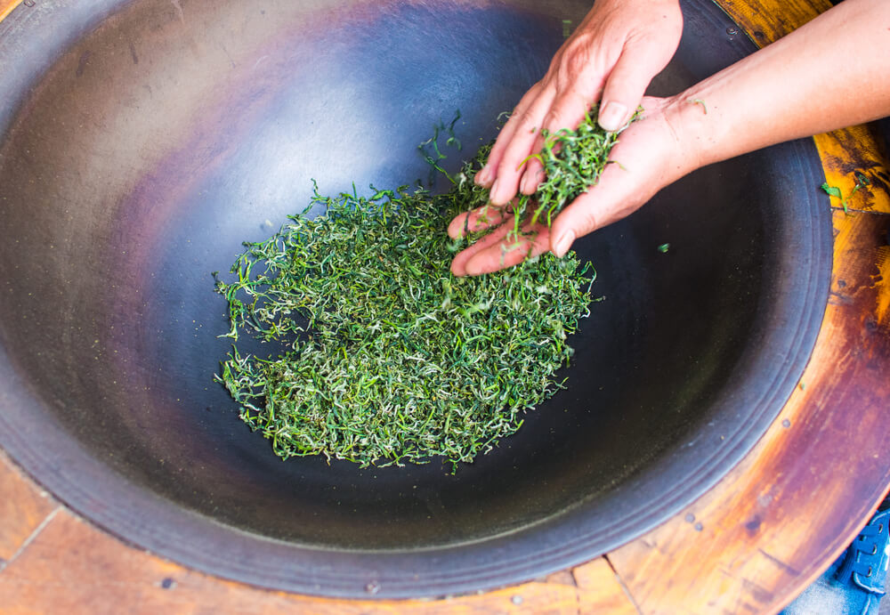 Green Tea လက်ဖက်ခြောက် ပြုလုပ်နည်းသင်တန်းပေးသွားမည်