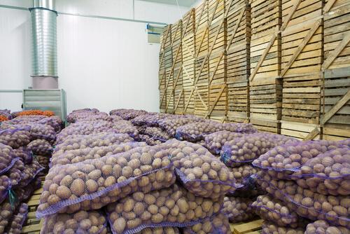 ပင်ပန်းသမျှ အကျိုးအမြတ်ရအောင် သီးနှံများကို စနစ်တကျ သိုလှောင်