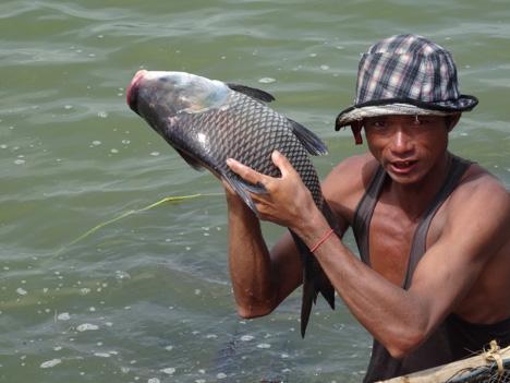 မြစ်ရေကြီးနေခြင်းကြောင့် ငါးမွေးမြူရေးလုပ်ငန်းရှင်များ ကြိုတင်ပြင်ဆင်ထားသင့်