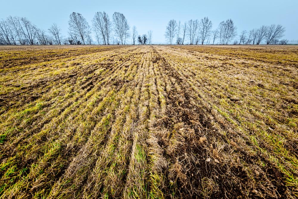 ပဲခူးတိုင်းအတွင်းမြေလွတ်၊ မြေရိုင်းဧက၉၀ဝ၀ဝကျော်သိမ်းဆည်းထား စိုက်ပျိုးရေးနှင့် မွေးမြူရေးလုပ်ငန်းလုပ်ကိုင်လိုသူများ လျှောက်ထားနိုင်