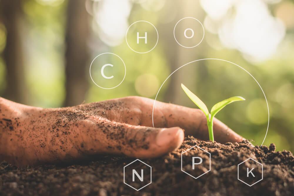 မြေဆီလွှာအတွင်း ကာဗွန်စုစည်းသိုလှောင်ခြင်း၏ အကျိုးကျေးဇူးများ