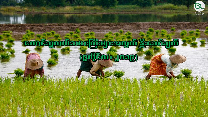 တောင်သူလယ်သမားကြီးများအတွက် နှိုးဆော်ချက် (ဇူလိုင်လ၊ ၂၀၁၉)