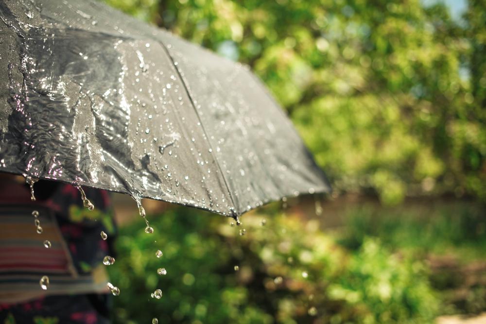 မိုးလေဝသ သတင်း