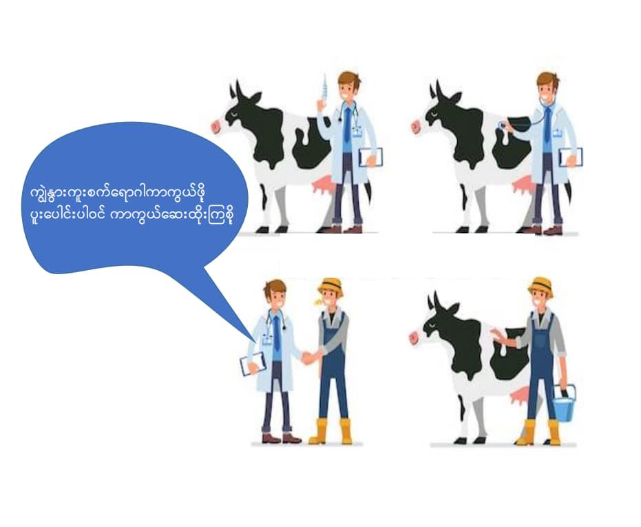 ကျွဲနွားကူးစက်ရောဂါ ကာကွယ်ဆေးထိုးနှံခြင်း (Vaccination)