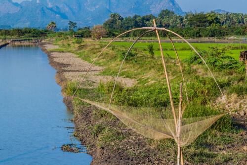 မြစ်ငါးတန်ကို သားဖောက်မွေးမြူ၍ တရုတ်နိုင်ငံအပါအဝင် ပြည်ပနိုင်ငံများသို့ တင်ပို့နိုင်ရန် လုပ်ဆောင်သွားမည်