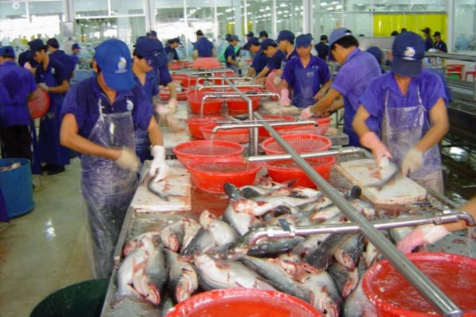 မြန်မာ့ရေထွက်ကုန်များ တရားဝင်တင်ပို့ရန် တရုတ် GACC သို့ ငါးမျိူးစိတ် ၂၁ မျိုး ဦးစားပေးတင်ပြထား