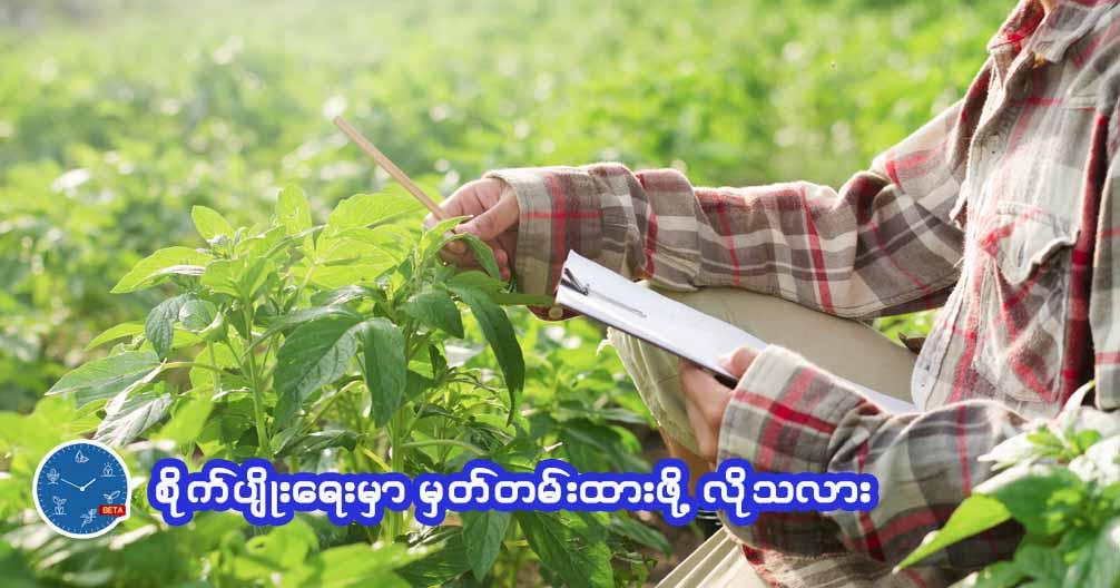 စိုက်ပျိုးရေးမှာ မှတ်တမ်းထားဖို့လိုသလား????