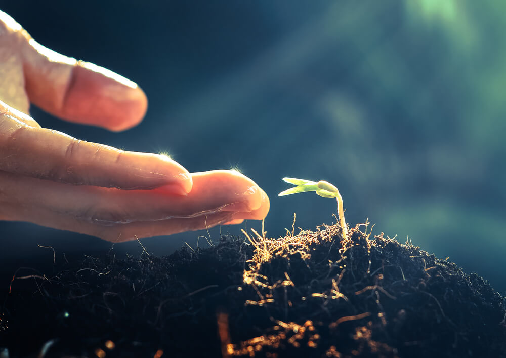 မျိုးစေ့ထုတ် တောင်သူများနှင့် စိုက်ပျိုးရေးဝန်ထမ်းများထံ စပါးအထွက်တိုးနည်းပညာစာအုပ် နှစ်ထောင်ကျော်ဖြန့်ဝေပေးမည်